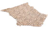 Goaty rug leopard print - getskinn